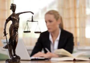 Die wissenschaftliche Tätigkeit und die Rechtsprechung